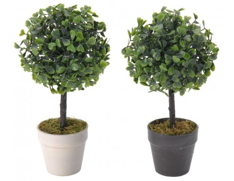PLANTA ARTIFICIAL KOOPMAN MODEL BUXUS